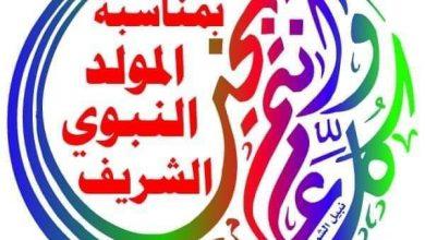 صورة سيناء والأمن القومى