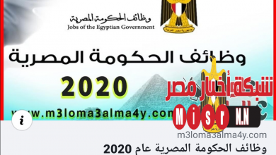 صورة وظائف الحكومة المصرية عام 2020